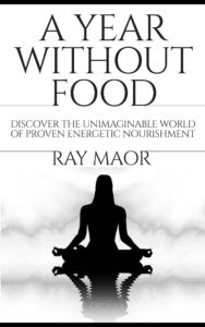 A year without food - Ray Maor book cover
