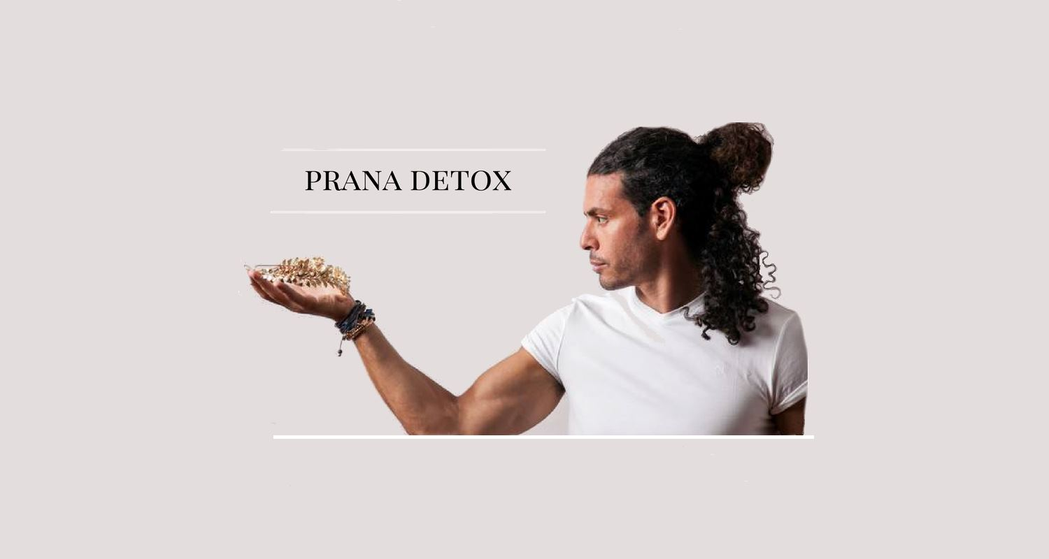 Ray Maor Prana detox Breatharian Workshop
