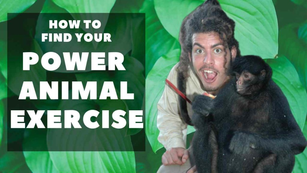Ray Maor - How to find you power animal